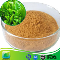 Natural Green Tea Extract 50% Catechins 50% EGCG Caffeine (HPLC)Theaflavin 30%-40%
