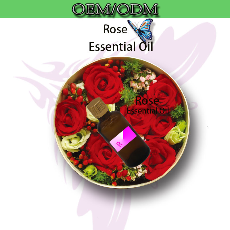 OEM/ODM 100 Pure Rose Oil Skin Firming Natural Essential Oils