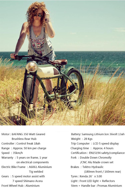 วินเทจจักรยานไฟฟ้าbikesสกปรกไฟฟ้าสำหรับผู้ใหญ่