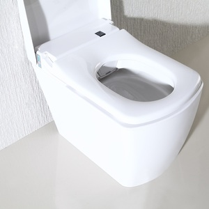 Auto Flush One Piece Electronic Toilet With Watermark Epcs Approved