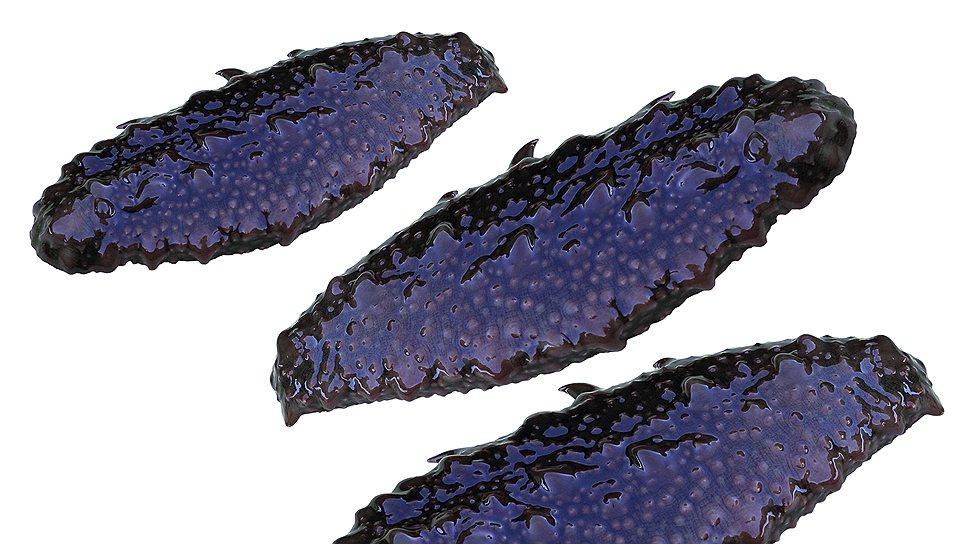 High quality russian frozen sea cucumber