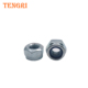 Zinc plated plain stainless steel Nylon Hex Lock Nut DIN985 DIN982 nylon hex nuts