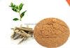 Highest potency Ashwagandha Extract/Withania Somnifera/Withanolides/phamaceuticals ingredient/food beverage additive/ healthcare