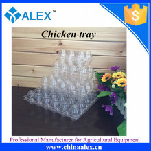 PVC/PET disposable plastic quail egg tray for 30 quail plastic vaccine quail egg tray wholesale