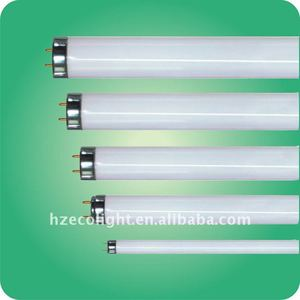 Ecolight Good popular sell and good quality t8 fluorescent lamp