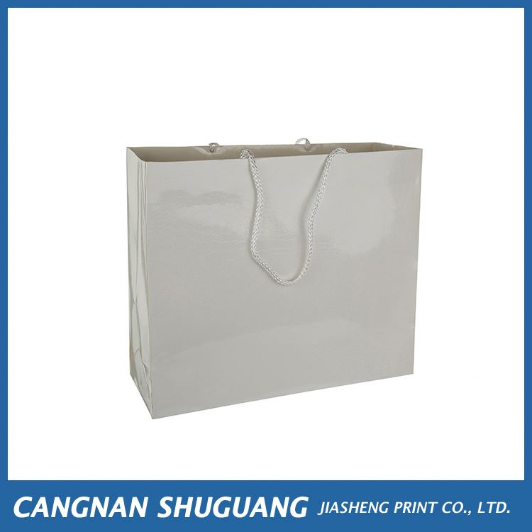 China manufacturer simple design fancy luxury paper shopping carry bag