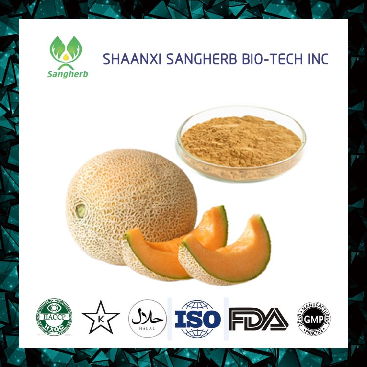 Fast delivery instant hami melon juice powder With Promotional Price