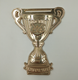 Custom mini Champion cup, metal prize cup, metal trophy and prize plate cup