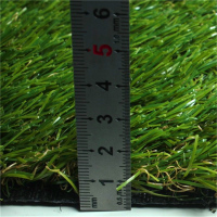 The Best Quality Lowes Sod Grass For Sports Field