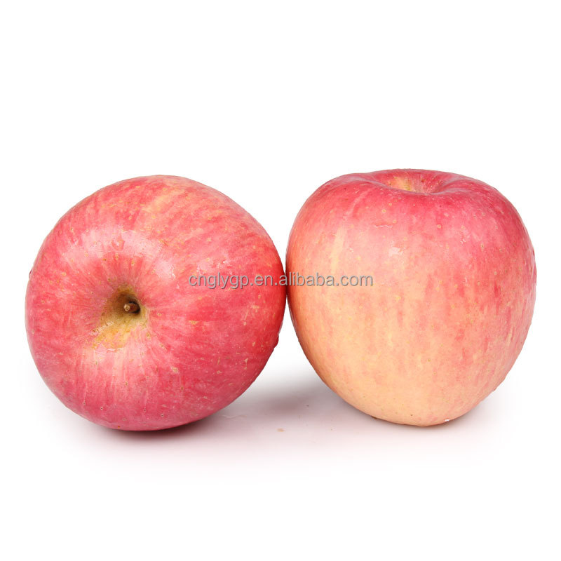 New crop apple pome fruit fresh rose fuji apple