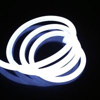 DC12V DC24V super flexible IP67 led neon flex light neon sign letters led neon light flex rope
