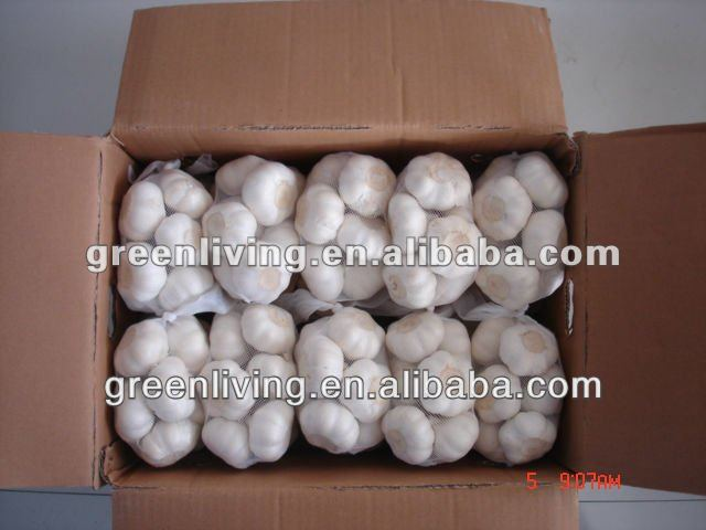 top quality natural fresh garlic cheap price for sale shandong china 2015new