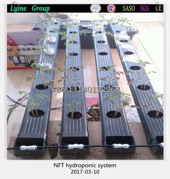 hydroponic channel