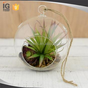Clear Glass Hanging 4 5 Inch Round Ball Air Plant Terrarium Globe