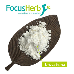 Wholesale Food Grade L-Cysteine Price