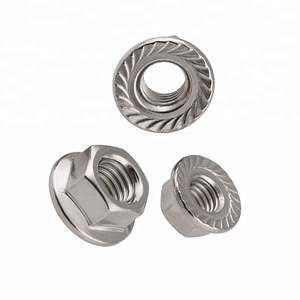 M6 M12 Stainless Steel SS 304 316 316L Serrated Hex Flange Nut