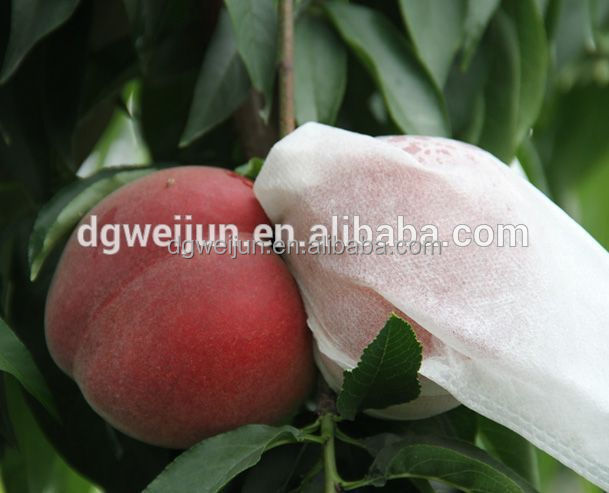 waterproof eco-friendly WJ nonwoven fruit cover bag