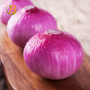 Onion Importers Malaysia, Onion Importers Malaysia Suppliers and