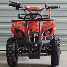 4 Wheeler 2 Stroke Air Cooled Mini Quad Atv 49cc with easy pull startv
