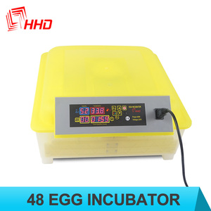 Big promotion! 12V/220V/110V incubator eggs Automatic chicken egg incubator for sale/poultry hatchery CE approved