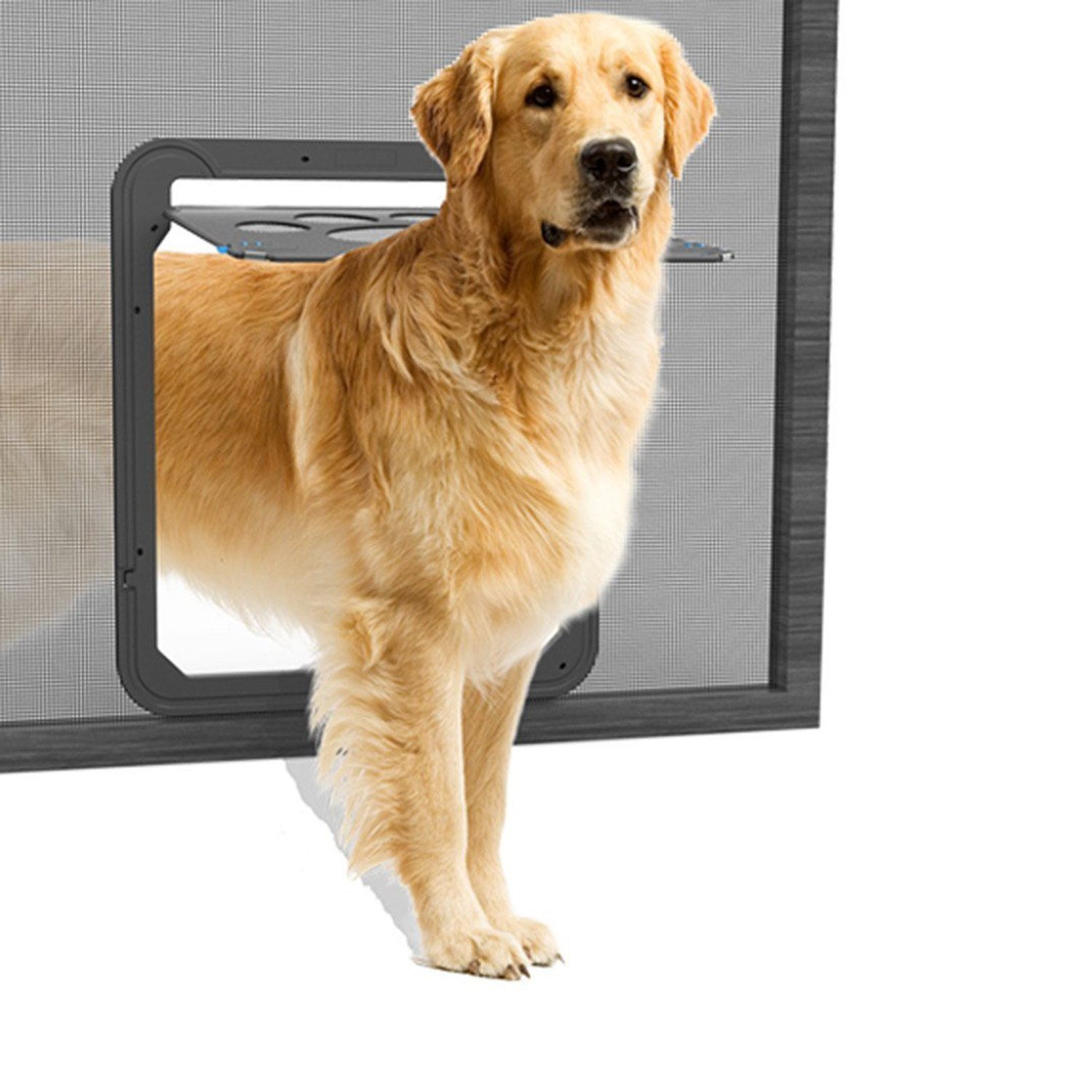 Cheap Dog Pet Door Find Dog Pet Door Deals On Line At Alibaba