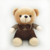 Size 50cm lovely brown Teddy bear plush toy strap dressing suits bear