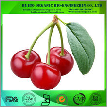 Wholesale freeze dried cherry powder with best price