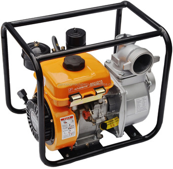 Standard Water Pumps With Flexible House Electric 220v