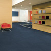 Carpet Tile with PVC Backing, Office Carpet