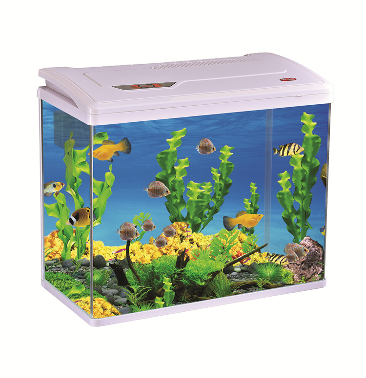 Wholesale Mini Portable Fish Tank Aquarium