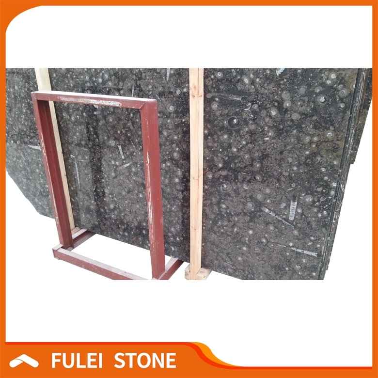 Good Polished Natural Brown Fossil Marble Slab Price