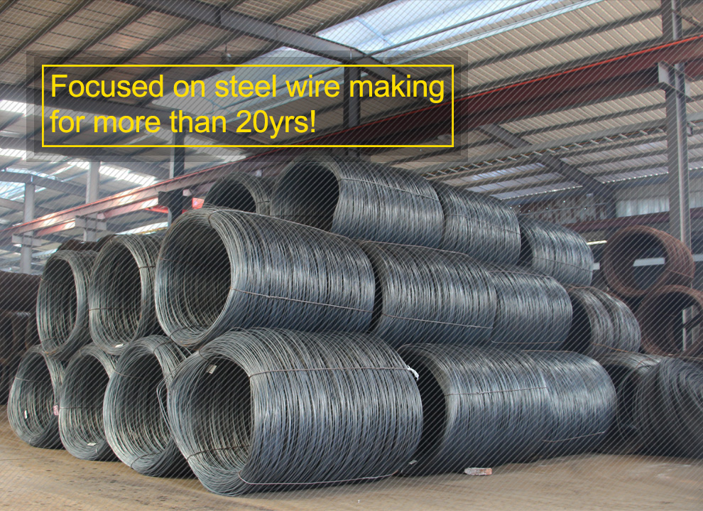 Nantong Boli Metal Products Co., Ltd. - Steel Wire,Spring Steel Wire