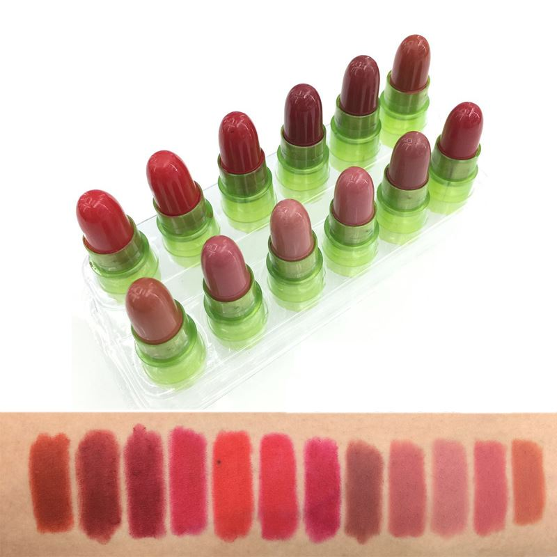 Profession Make Up Lip Stick Long Lasting Waterproof Pigments Red Brown Mini Matte 12pcs Lipstick Set Makeup Lots