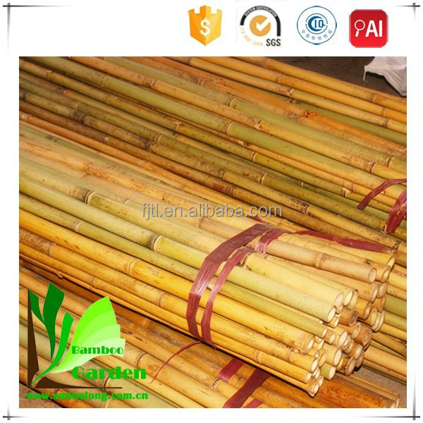 Bamboo Poles Low Cost House Construction Material