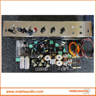 Deluxe TWEED DELUXE 5E3 Guitar Amp Tube Amplifier Kit DIY