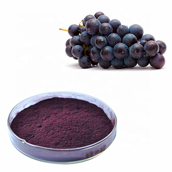 cosmetic grade  antioxidant black currant extract powder 15 percent anthocyandins