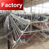 Factory price manure removal system chicken/pig for bangladesh