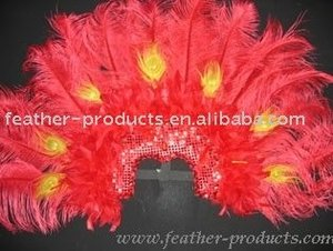 feather headgears