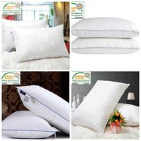 Best Western Hotel Feather Down Pillow