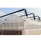 Multi-span Poly Tunnel Plastic Film Greenhouse For Vegetables /tomatos