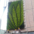 Various Artificial Greenery Plant Wall