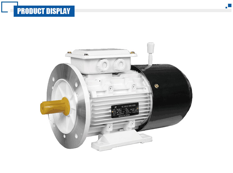 Quick Brake Asynchronous Three-Phase Electric Motor