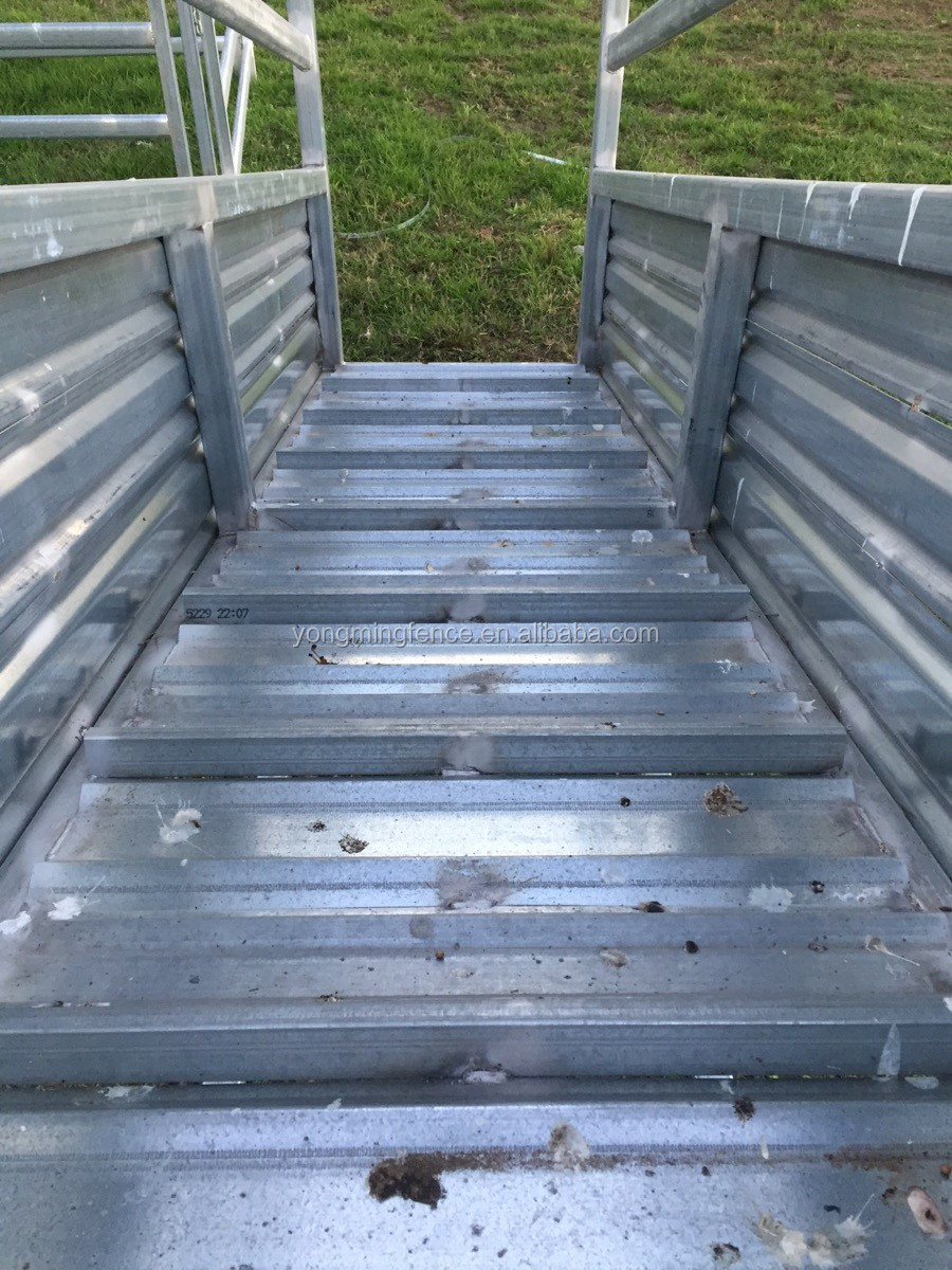 Panels /& Gates Loading Ramp Plans Book Cattle Handling Equipment Weigh Crate