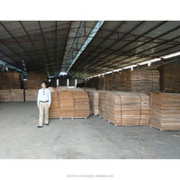 Eucalyptus Core Veneer from Vietnam 1270mm x 640mm