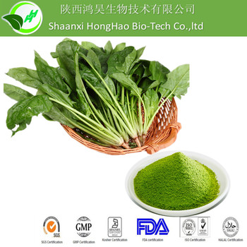 100% Natural Spinach juice concentrate powder / Spinach concentrate powder