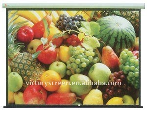 CE for motorized projection screen