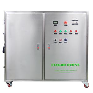 Automatic Water Contamination Solving Equipment Ozonizer