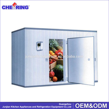 restaurant equipment cold room freezer for vegetable food storage