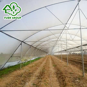 Steel structure Farm Used Tropical Greenhouses for Tropic Area
