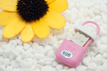 Special gift 100% real capacity 8GB 16G  Mini tiny  flash drives storage devices USB Flash Drive Disk Memory Sticks S115 28% off